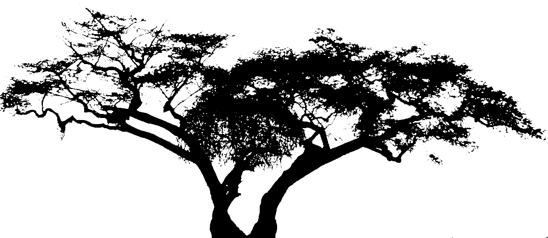 Gimp tutorial tree silhouette in sunset part 1